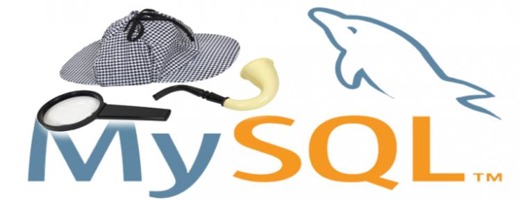 save all mysql queries