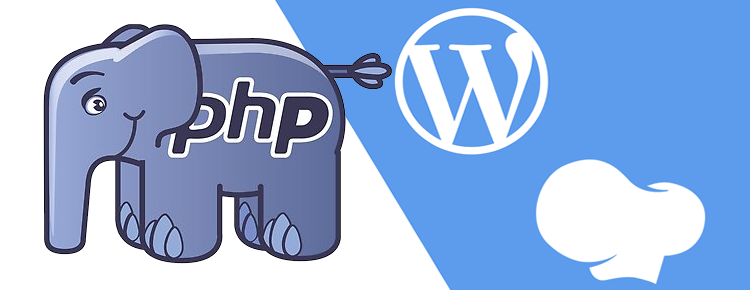 embed php code in wp bakery